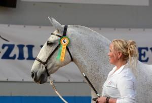 Foto: Anneke Nies - Van der Goes