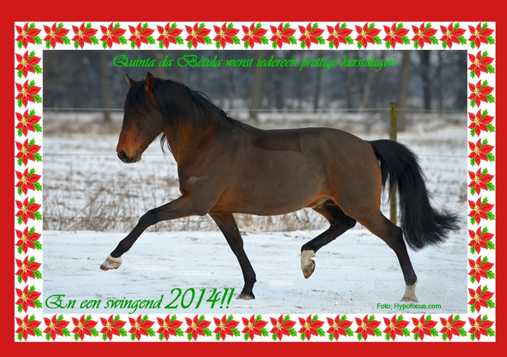 kerst 2013